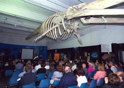cep 12 - 5^ Stagione - Oggi - Musiche da vedere, riminescenze - Museo Civico di Zoologia